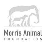 icon-morrisanimalfoundation
